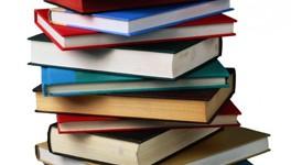 Biblioteca con libros en Inglés